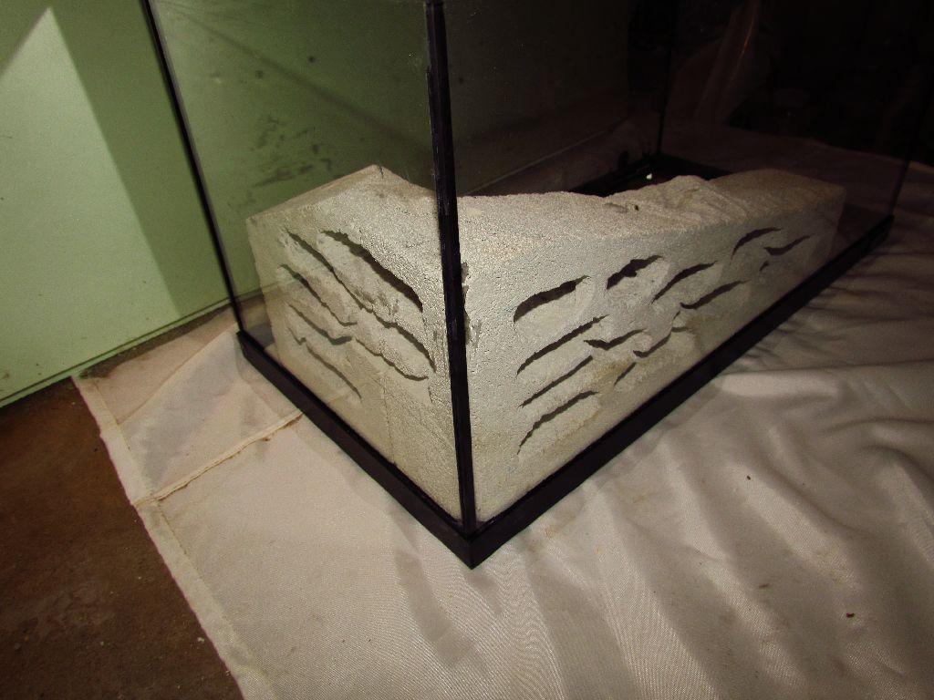formikarium , ytong , akvarium